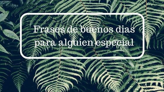 Frases De Buenos Dias Para Alguien Especial Frases Para